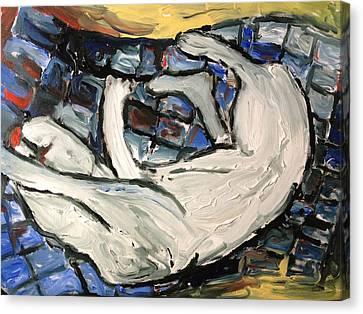 Sleeping Cat Canvas Print by Patrick Humphreys