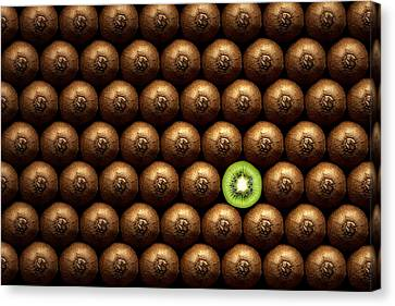 Sliced Kiwi Between Group Canvas Print by Johan Swanepoel