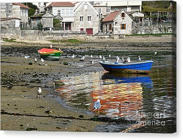 Small Boats And Seagulls In Galicia Canvas Print by RicardMN Photography