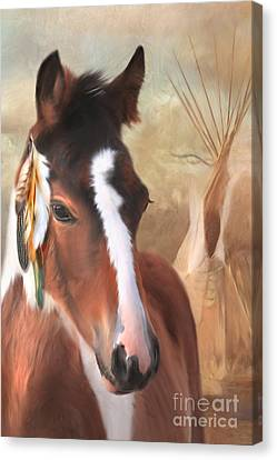 Small Chief Little Feathers Canvas Print by Trudi Simmonds