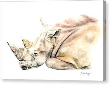Small Colour Rhino Canvas Print by Elizabeth Lock
