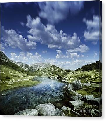 Small Stream In The Mountains Of Pirin Canvas Print by Evgeny Kuklev