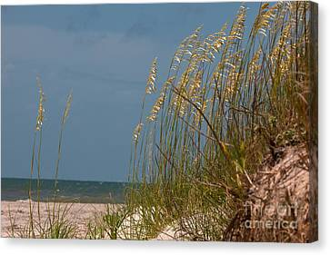 Smell The Salt Air Canvas Print by Dale Powell