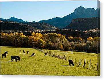 Smithsonian Butte And Two Feathers Ranch Early Fall On The Virgin River Rockville Utah Canvas Print by Robert Ford