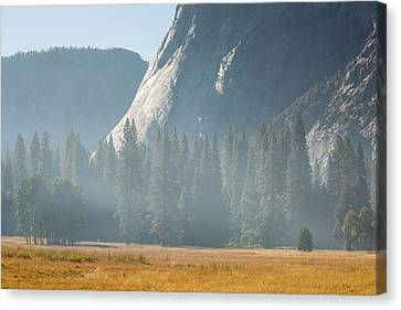 Smoke From A Forest Fire Canvas Print by Ashley Cooper