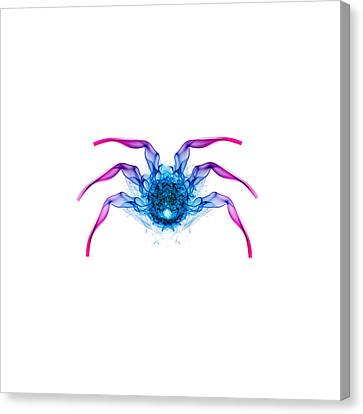 Smokey Bug 2 Canvas Print by Steve Purnell