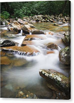 Smokey Mountain Creek Canvas Print by Adam Romanowicz