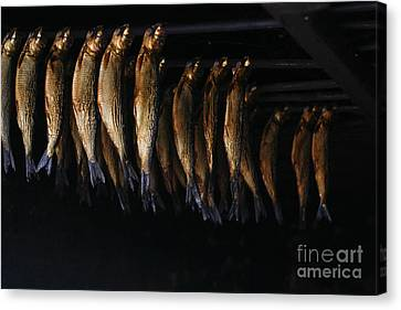 Smoking Fish Canvas Print by Patricia Hofmeester