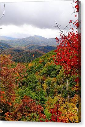 Smoky Mountains In The Fall Canvas Print by Dan Sproul