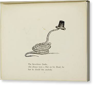 Snake Wearing A Hat Canvas Print by British Library