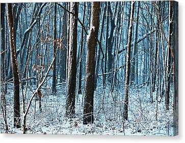 Snow At Dusk Canvas Print by Tim Michael