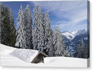 Snow Covered Trees And Mountains In Beautiful Winter Landscape Canvas Print by Matthias Hauser