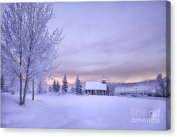 Snow Day Canvas Print by Kristal Kraft