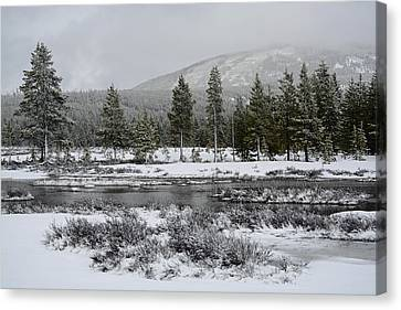 Snow-dusted Gibbon Meadows In Yellowstone Canvas Print by Bruce Gourley