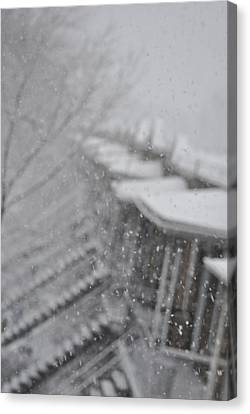Snow Flake Focus Canvas Print by Frederico Borges