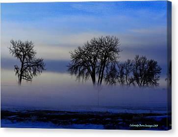 Snow Fog Canvas Print by Rebecca Adams