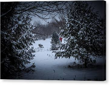Snow In The Meadow Canvas Print by Cheryl Swift