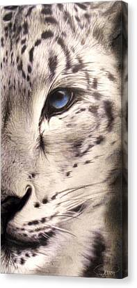 Snow Leopard Canvas Print by Sheena Pike