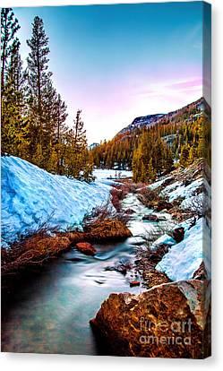Snow Paradise Canvas Print by Az Jackson