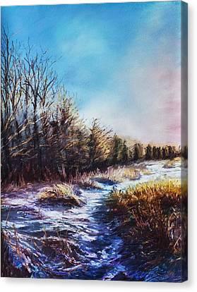 Snow Path Canvas Print by Bob Northway