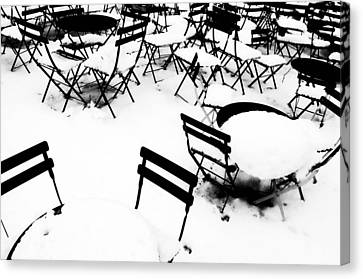 Snow Picnic Canvas Print by Diana Angstadt