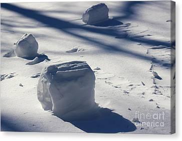 Snow Roller Trio In Shadows Canvas Print by Karen Adams