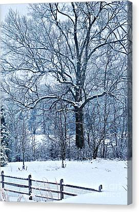 Snow Canvas Print by Sarah Loft