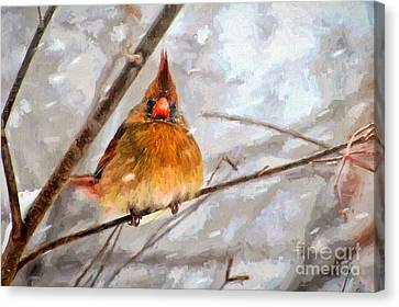 Snow Surprise - Painterly Canvas Print by Lois Bryan