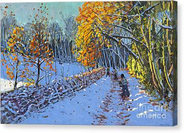 Snowballing Canvas Print by Andrew Macara