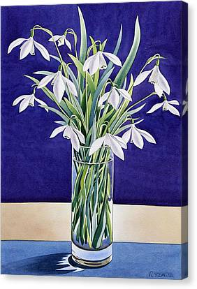 Snowdrops  Canvas Print by Christopher Ryland