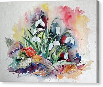 Snowdrops Canvas Print by Kovacs Anna Brigitta