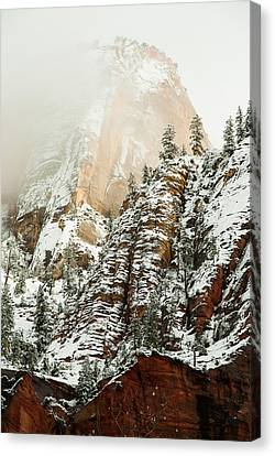 Snowfall Zion National Park Utah Canvas Print by Robert Ford