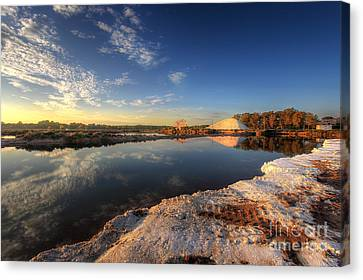 Snowfields Of Faro Canvas Print by English Landscapes