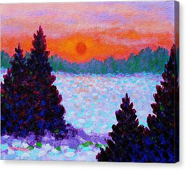 Snowscape Canvas Print by John  Nolan