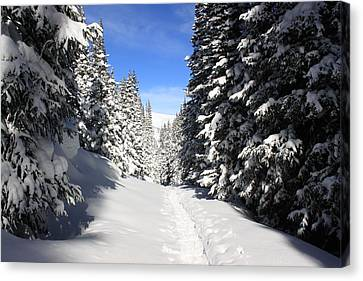 Snowshoe Heaven Canvas Print by Eric Glaser