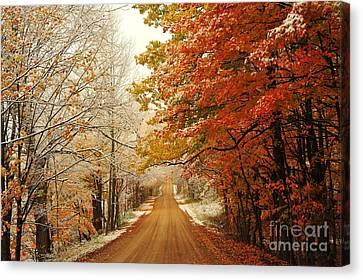 Snowy Autumn Road Canvas Print by Terri Gostola