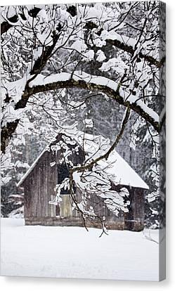 Snowy Barn 2 Canvas Print by Rob Travis