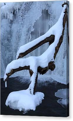 Snowy Log Frozen Canyon Waterfall Canvas Print by John Stephens