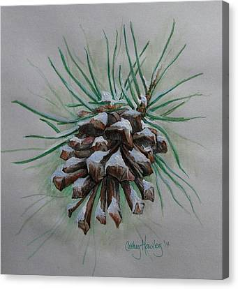 Snowy Pinecone Canvas Print by Catherine Howley