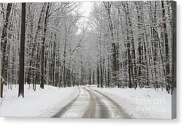 Snowy Road In Oak Openings 7058 Canvas Print by Jack Schultz