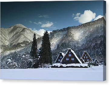 Snowy Trio Canvas Print by Aaron S Bedell