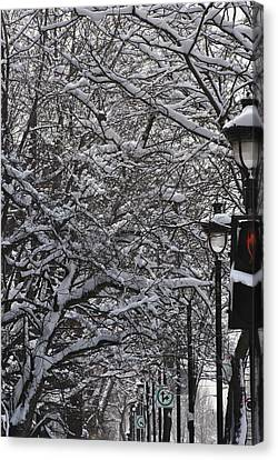 Snowy Way Canvas Print by Frederico Borges