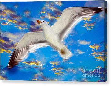 Soaring Canvas Print by Jon Neidert