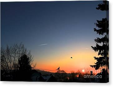 Soaring Sunrise 2 Canvas Print by Jay Nodianos