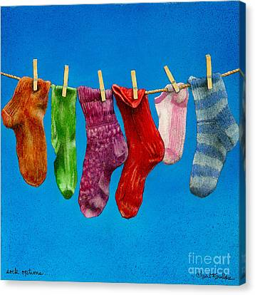 Sock Options... Canvas Print by Will Bullas