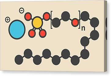 Sodium Laureth Sulphate Molecule Canvas Print by Molekuul