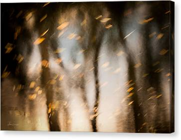 Soft Autumn Canvas Print by Steven Milner