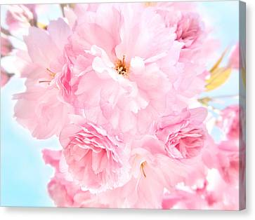 Soft Blue Sky With Pink Flowers Canvas Print by Marianna Mills