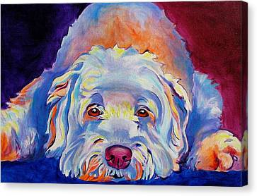 Soft Coated Wheaten Terrier - Guinness Canvas Print by Alicia VanNoy Call