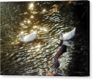 Soft White Canvas Print by Brian Wallace